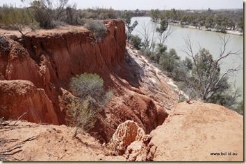 Red Cliffs Murray River