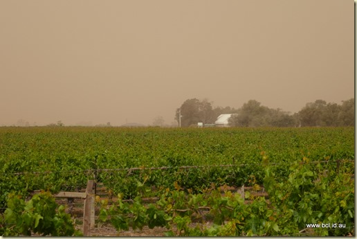Red Cliffs Dust Storm