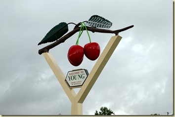 Young - Cherry Sign